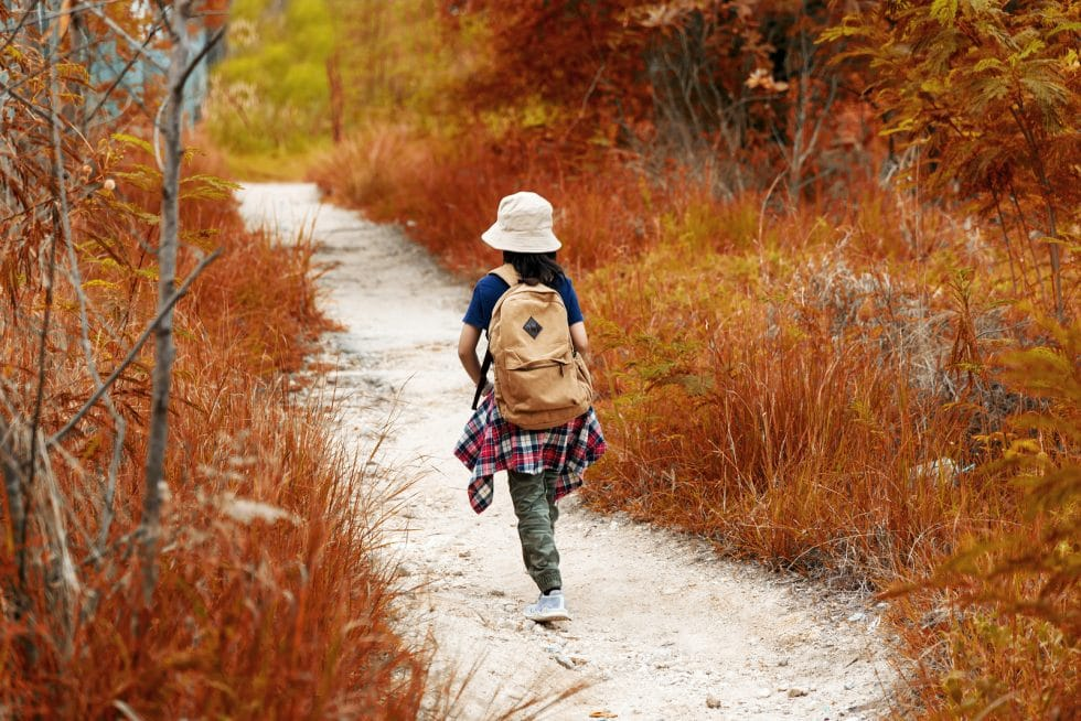 Tripps Plus Promotions Suggestions and Techniques of Experiencing a Hiking Holiday (1)