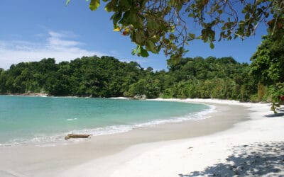Tripps Plus Reviews Costa Rica, The Nature Lovers Paradise